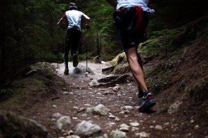 trail-broceliande